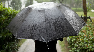 Pogoda na jutro: zagrzmi i silniej popada
