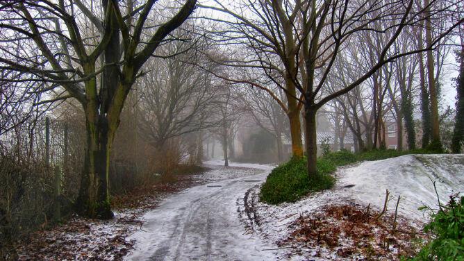 Prognoza pogody na dziś: <br />deszcz, śnieg, silny wiatr