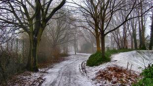 Prognoza pogody na dziś: deszcz, śnieg, silny wiatr