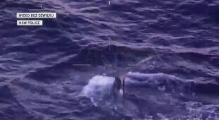 Wieloryba obserwowano z powietrza